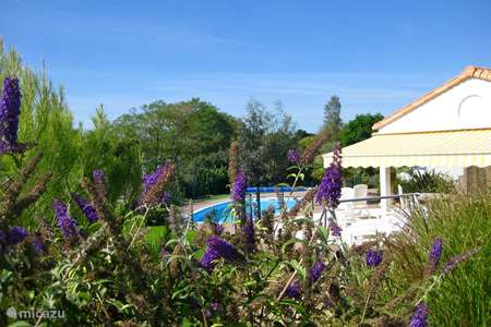 Vacation rental France, Vendee, Château-d'Olonne villa Villa in France