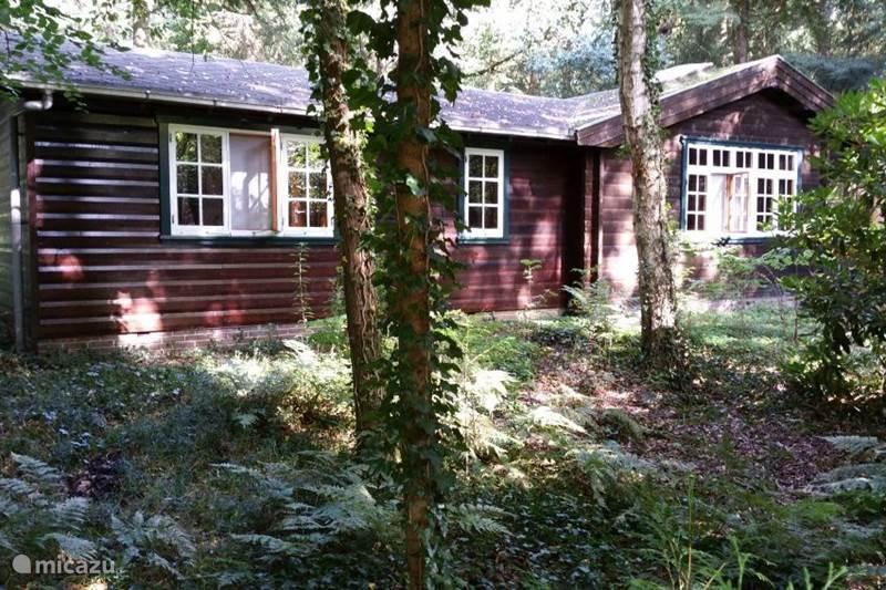 Vakantiehuis Nederland, Drenthe, Norg Blokhut / Lodge Vakantiehuis Orkdalen