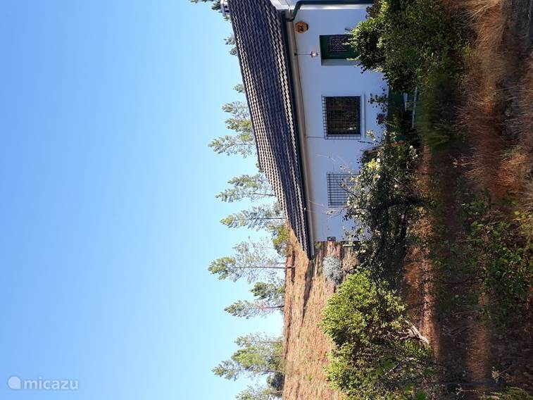 Ferienwohnung Portugal, Beiras, Santo André das Tojeiras gîte / hütte Ferienhaus in Monte Gordo