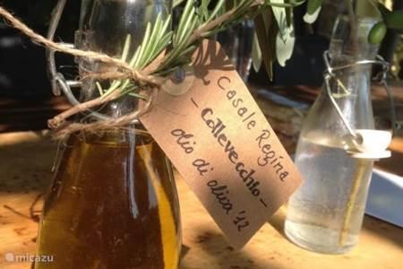 Olijfolie, wijn & food workshops - thuis bij Casale Regina