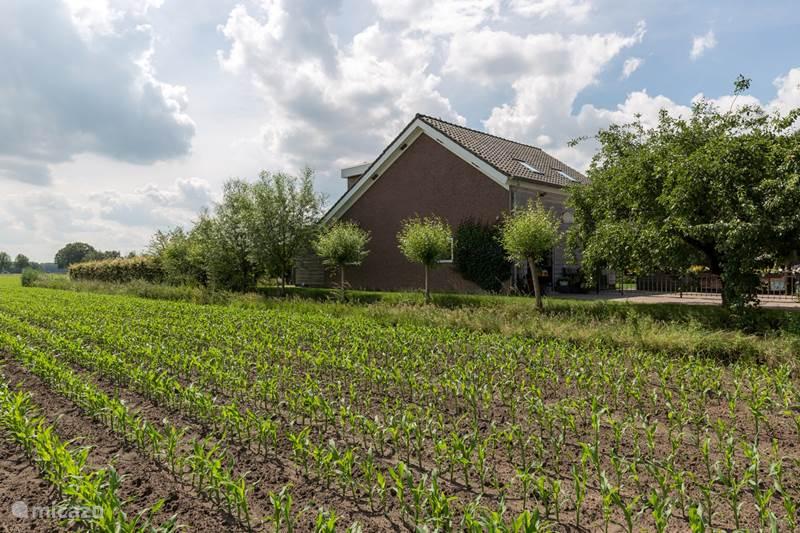 Vakantiehuis Nederland, Noord-Brabant, Tilburg Bed & Breakfast De Nieuwe Warande
