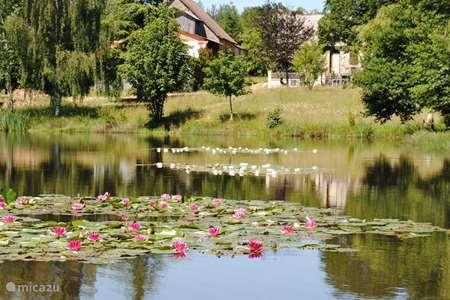 Vacation rental France, Dordogne, Sarlande terraced house La Marmite