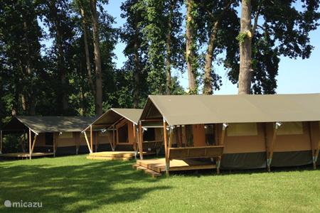 Ferienwohnung Deutschland, Niedersachsen, Warmsen glamping / safarizelt / yurt Ferienhof BrinkOrt 3