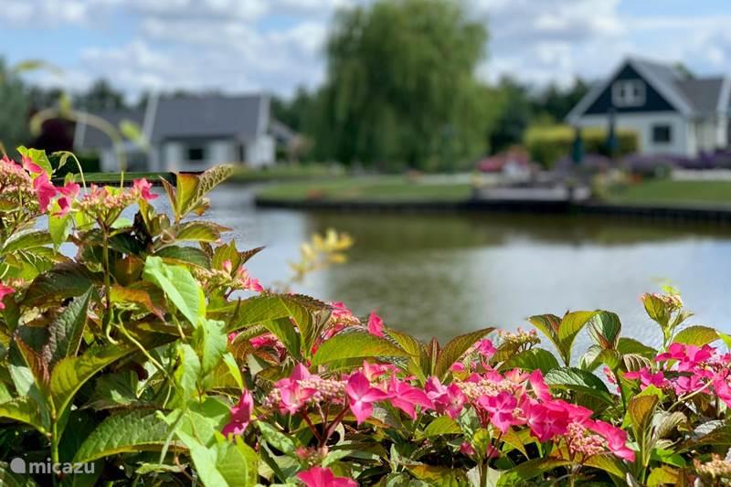 Vakantiehuis Nederland, Drenthe, Gasselternijveen Villa Vakantiehuis in Drenthe ***luxe***