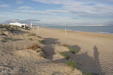 Het strand bij La Marina