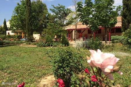Vakantiehuis Frankrijk, Aude, Mailhac bungalow La Pastorale