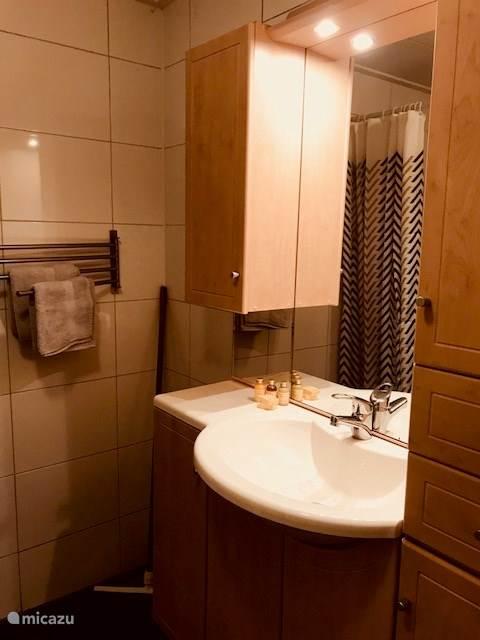 Badkamer met douche en toilet.