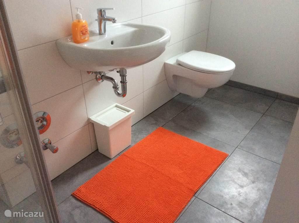 Wastafel en randloos toilet