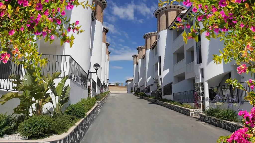 Vacation rental Spain, Costa Blanca, La Marina del Pinet apartment Casa la Pluma