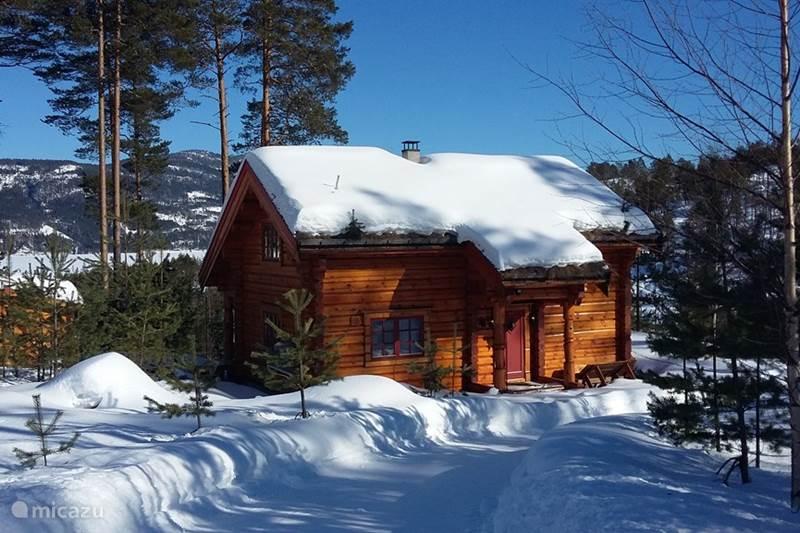 Vakantiehuis Noorwegen, Telemark, Vråliosen Vakantiehuis Kjekt a Ha