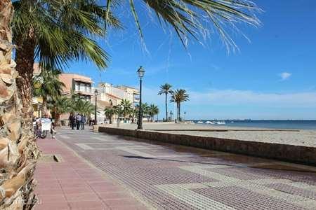 Vacation rental Spain, Murcia, Torre-Pacheco apartment Apartment Lilo