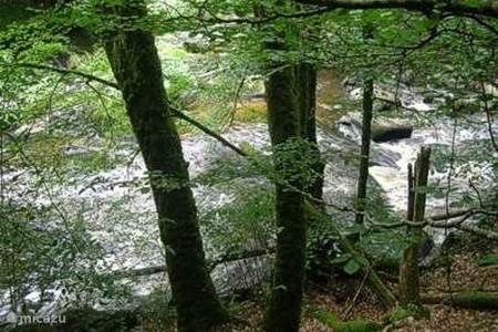 Wielrennen, mountainbiken, fietsen, wandelen, de natuur in...