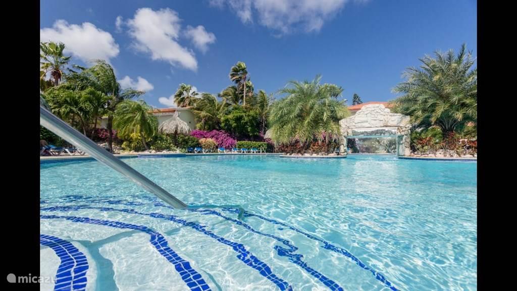 Vacation rental Curaçao, Curacao-Middle, Koraal Partier studio Studio DiviDivi