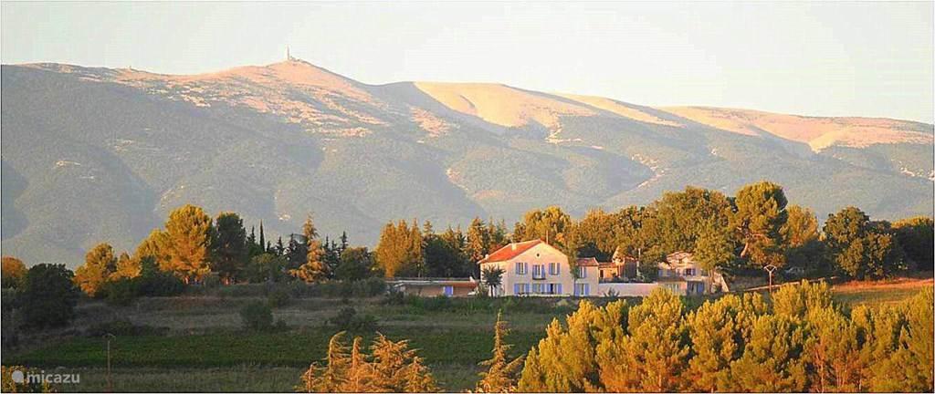 Vakantiehuis Frankrijk, Provence, Mazan Glamping / Safaritent / Yurt Safaritent Acacia
