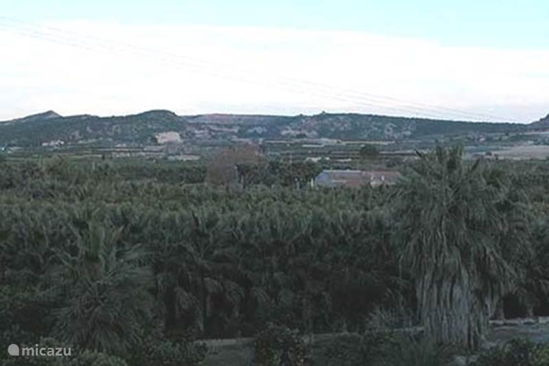 Vakantiehuis Spanje, Costa Blanca, Jacarilla Penthouse Las Marquesas IV - Penthouse