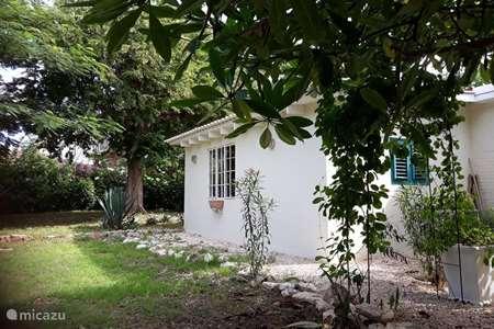 Vakantiehuis Curaçao, Curacao-Midden, Julianadorp – appartement Modern tuinappartement
