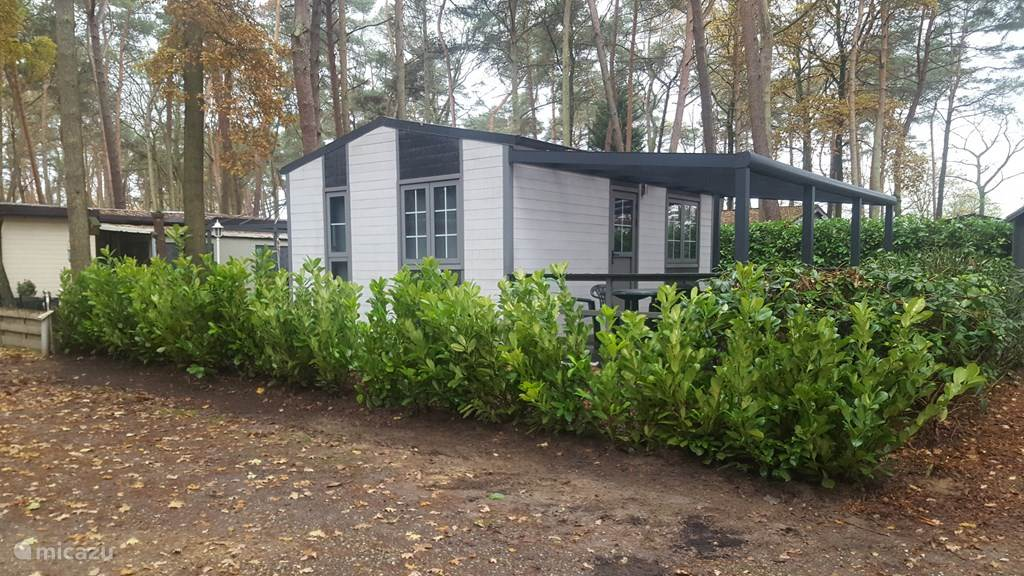 Ferienwohnung Belgien, Limburg, Bocholt Chalet Bambus