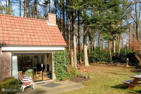 Vakantiehuis Nederland, Gelderland, Harfsen vakantiehuis Krullevaar