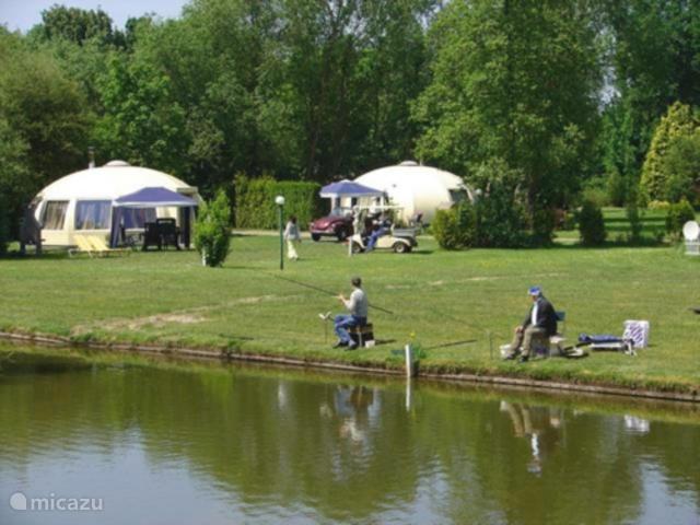 Vakantiehuis Nederland, Noord-Brabant, Chaam Bungalow Iglo bungalow 26