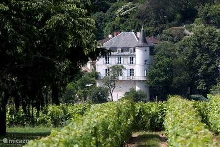 Vakantiehuis Frankrijk, Lot, Luzech - landhuis / kasteel Château de la Blainie