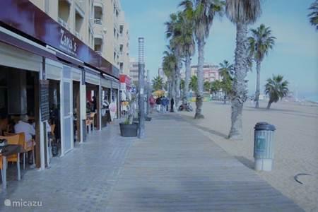 La Playa de La Mata