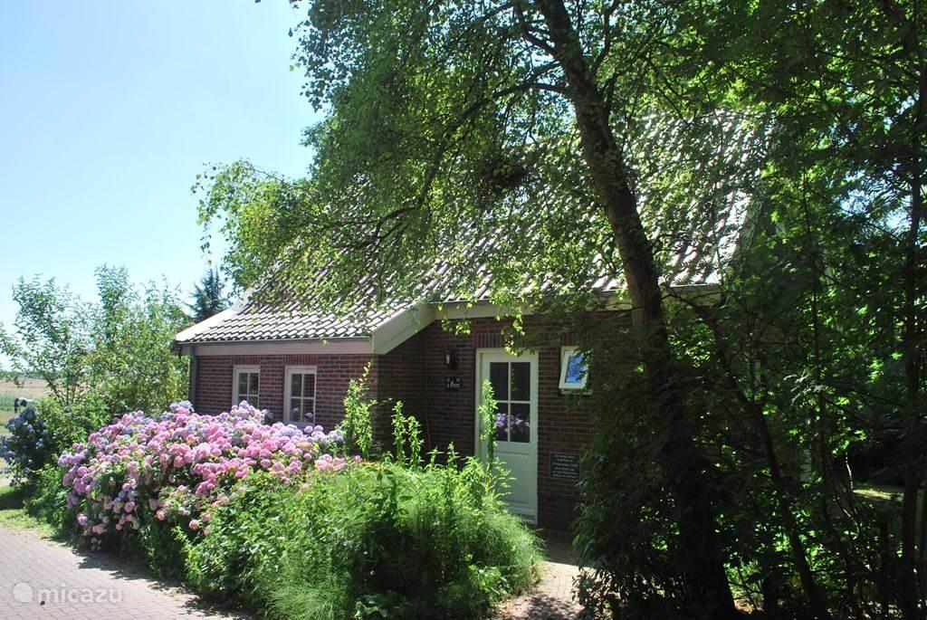 Vakantiehuis Nederland, Texel, Den Burg Vakantiehuis De Prins - Mienthuis