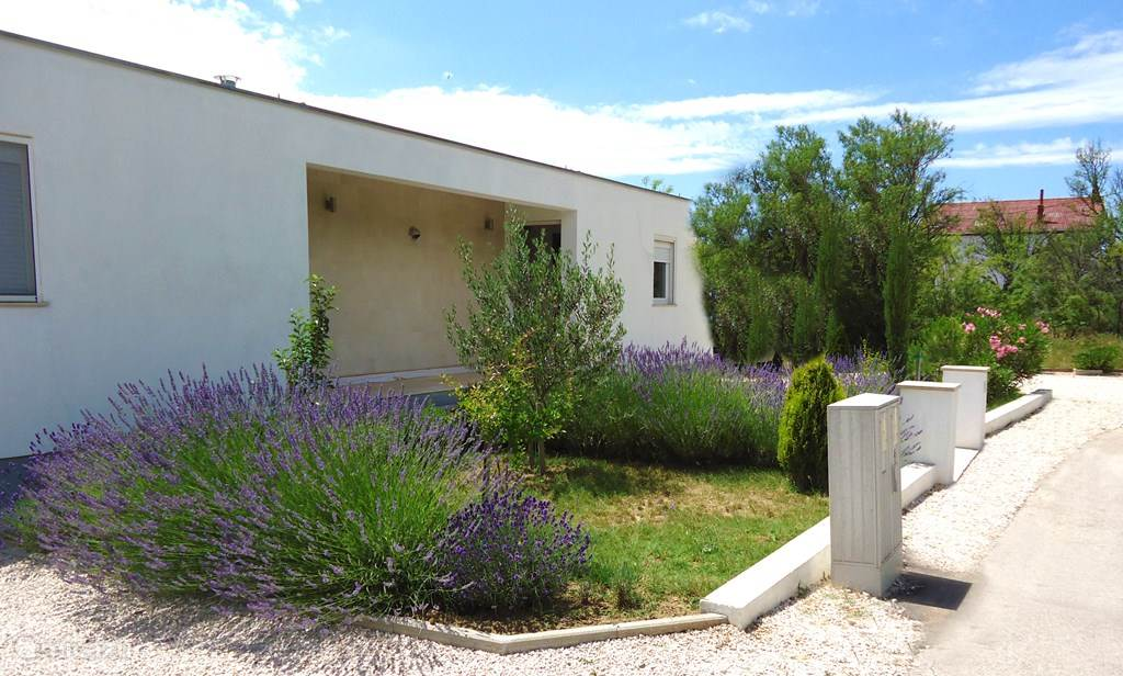 Vacation rental Croatia, Dalmatia, Starigrad-Paklenica Holiday house Holiday home Croatia