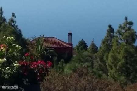 Vacation rental Spain – finca Vinca Alegria