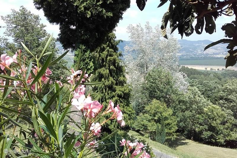 Vakantiehuis Italië, Piëmont, Monastero Bormida Appartement Casa Domenica Olmi