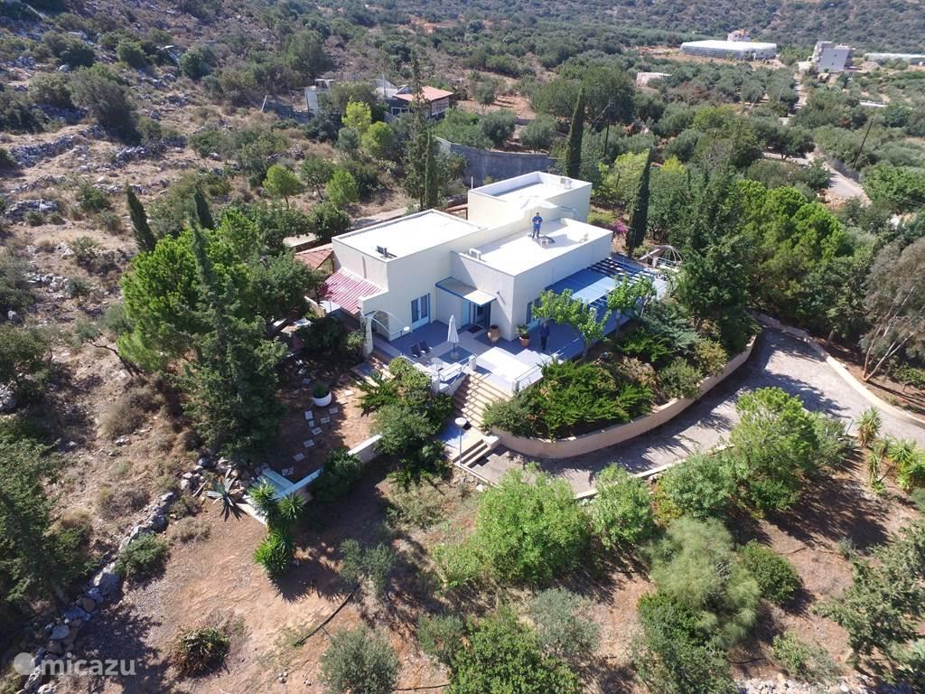 Vakantiehuis Griekenland, Kreta, Malia villa Villa Volakas