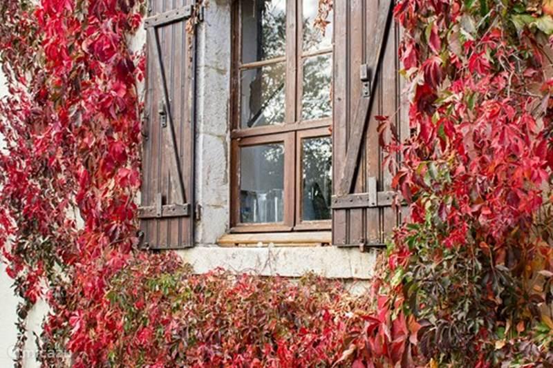 Vakantiehuis Frankrijk, Haute-Marne, Jagée Gîte / Cottage Chouchou (Maison Garde Barrière)