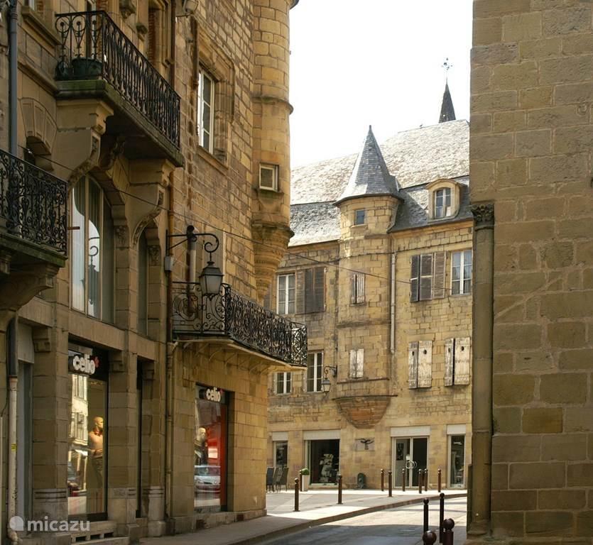 Vakantiehuis Frankrijk, Dordogne, Brive Landhuis / Kasteel Domaine de Migoule