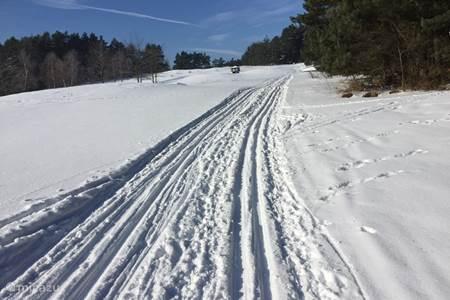 winter sports options