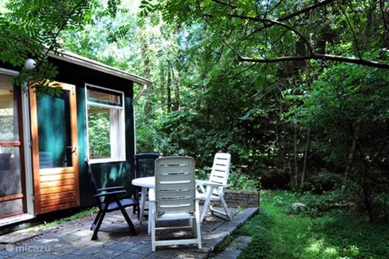 Vakantiehuis Nederland, Drenthe, Norg Vakantiehuis Vakantiehuis Brummel in de natuur