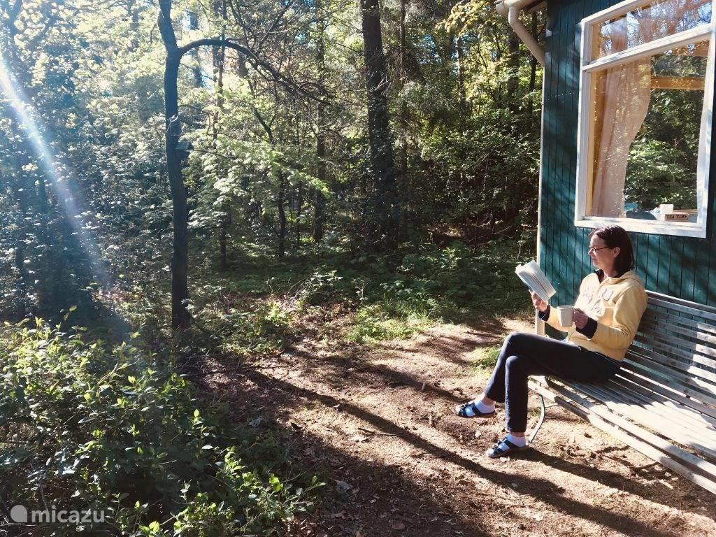 Holiday home Brummel in nature in Norg - Drenthe - Netherlands
