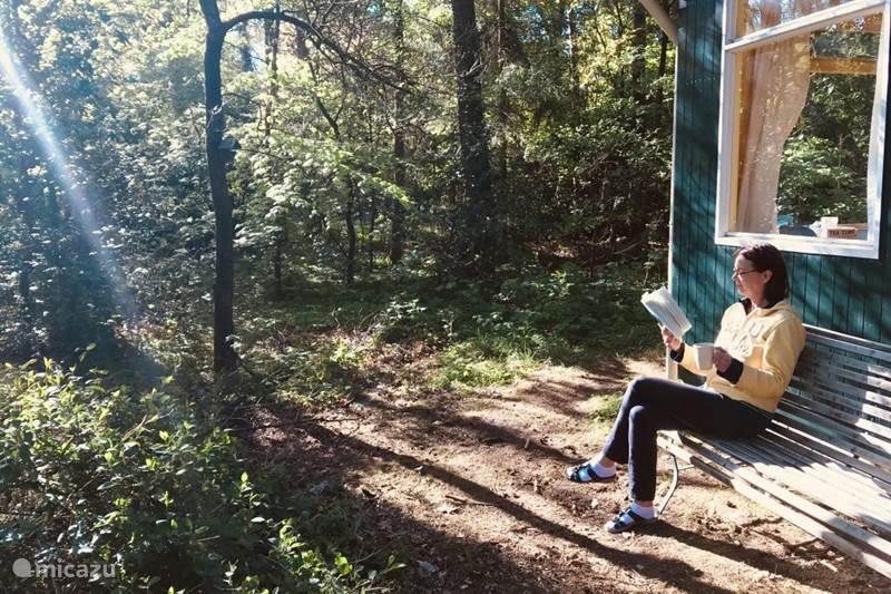Ferienwohnung Niederlande, Drenthe, Norg Ferienhaus Ferienhaus Brummel in der Natur