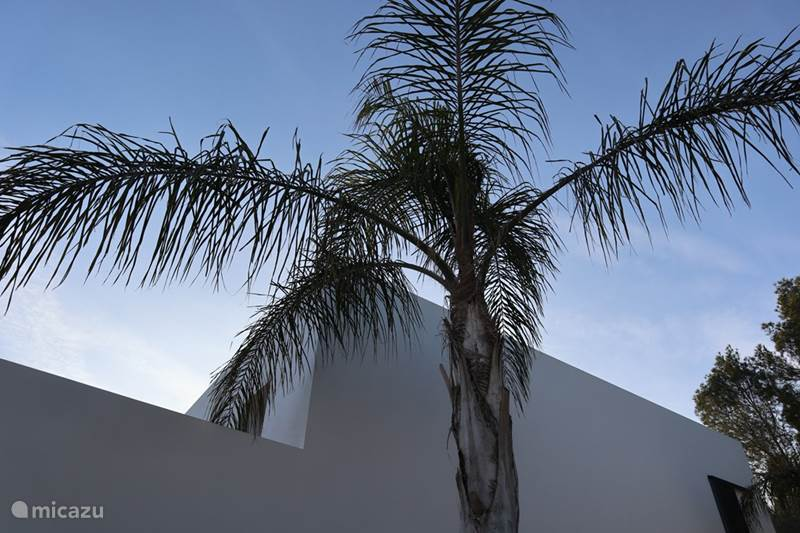 Vacation rental Spain, Costa Blanca, Benissa Villa Villa Moderno