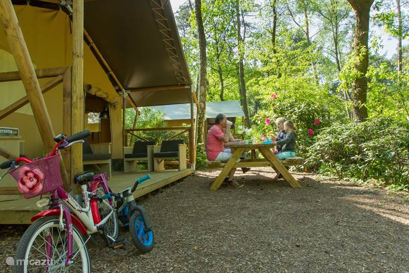 Vakantiehuis Nederland, Gelderland, Nunspeet Glamping / Safaritent / Yurt Safaritent Nunspeet