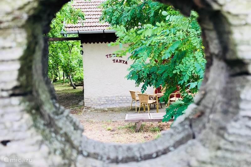 Vakantiehuis Hongarije, Pest, Törtel Boerderij Terra Tanya