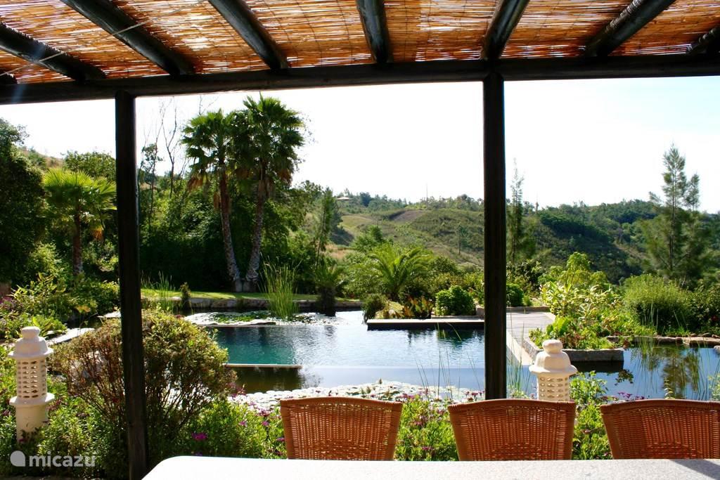 Vakantiehuis Portugal, Algarve, Caldas de Monchique Villa Villa Ribeira do Banho