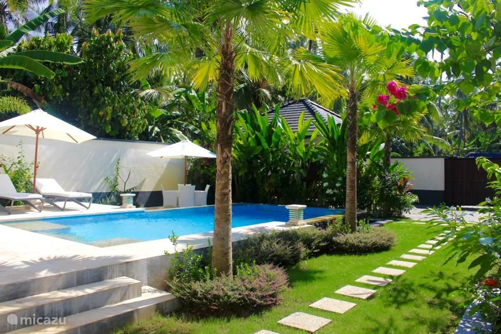 Vakantiehuis Indonesië, Bali, Kaliasem Bungalow Villa Kupu Kupu