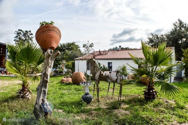 Vakantiehuis Portugal, Alentejo, Montemor-O-Novo Vakantiehuis Hannibal