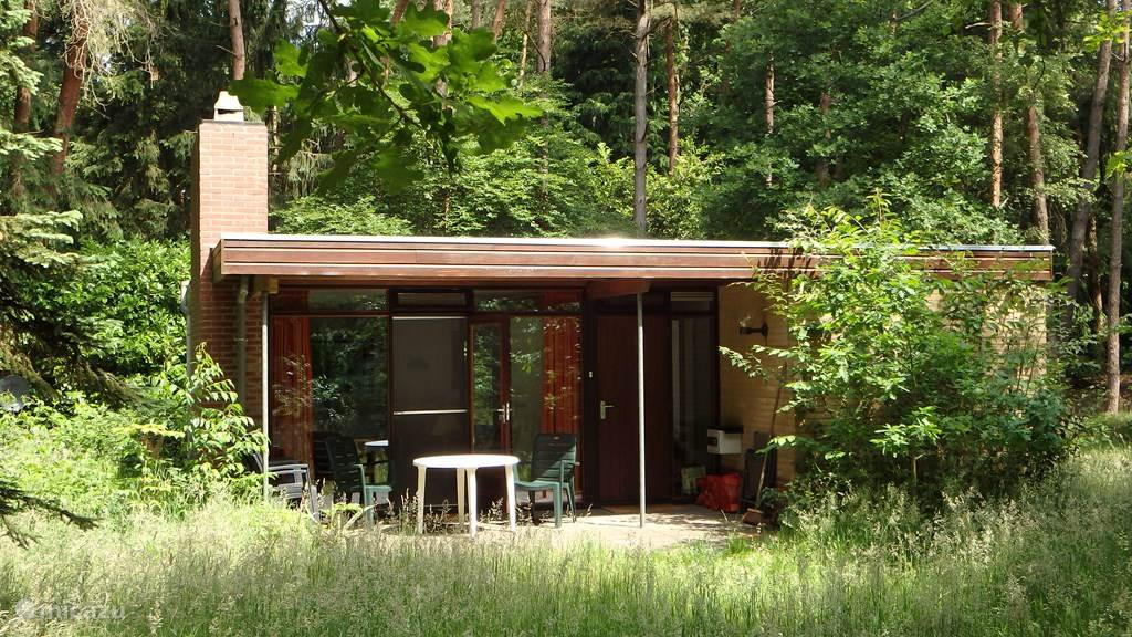 Vakantiehuis Nederland, Overijssel, Dalfsen vakantiehuis Natuurhuisje Bosweg 48