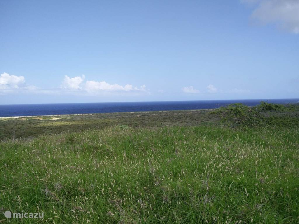 Vakantiehuis Curaçao, Curacao-Midden, Fortuna Ariba Appartement Tropical Vacation Experience