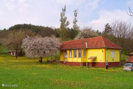 Vakantiehuis Hongarije, Nógrád, Zabar – vakantiehuis Huisje de boomkikker