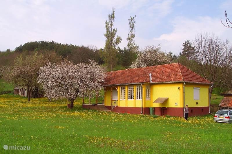 Vakantiehuis Hongarije, Nógrád, Zabar Vakantiehuis Huisje de boomkikker
