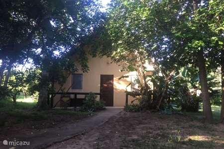 Vakantiehuis Zuid-Afrika – chalet Ingwe huis in de bush, Kwazulu Natal