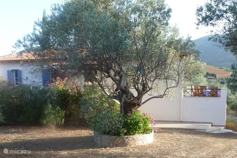 Vakantiehuis Griekenland, Peloponnesos, Archaia Epidavros Vakantiehuis GoddelijkGriekenland