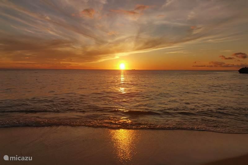 Ferienwohnung Curaçao, Curacao-Mitte, Blue Bay Appartement Blue Bay Wohnung