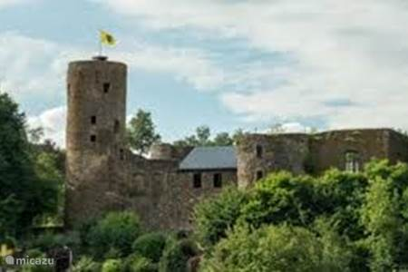 Burgruine in Burg Reuland (4m)